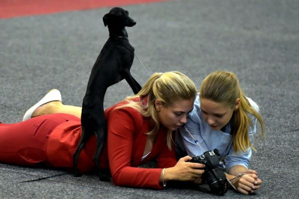 業界認為,初學單反相機攝影的消費者,容易被提升拍攝功能的智能手機搶走。圖片來源:路透社