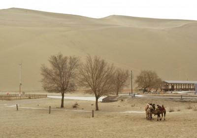 中國沙漠化危機,是天災還是人禍?