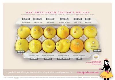 12 種乳癌病徵。 圖片來源:World Wide Breast Cancer