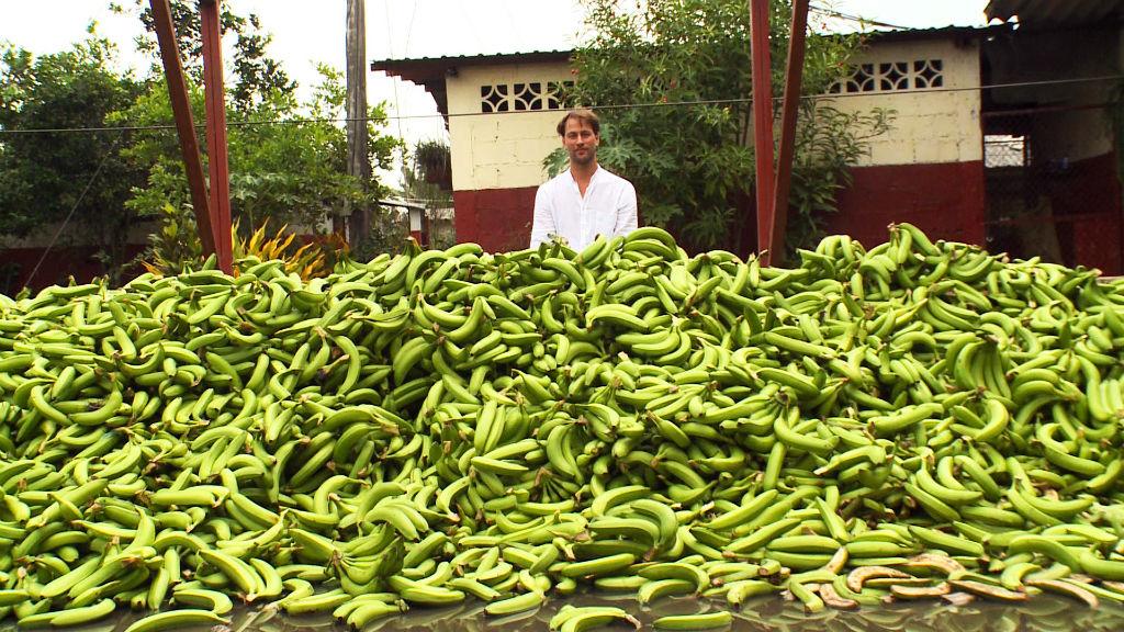 厄瓜多爾一處香蕉種植場一日所棄置的香蕉。 圖片來源:National Geographic