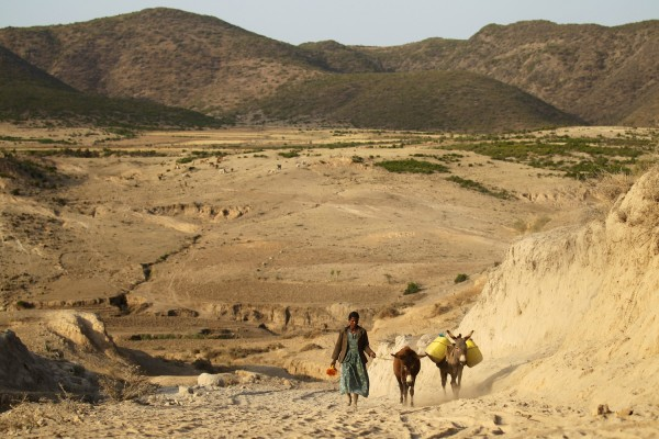 探訪經過的村落遍地荒蕪,只見往打水趕路中的兒童和驢仔。