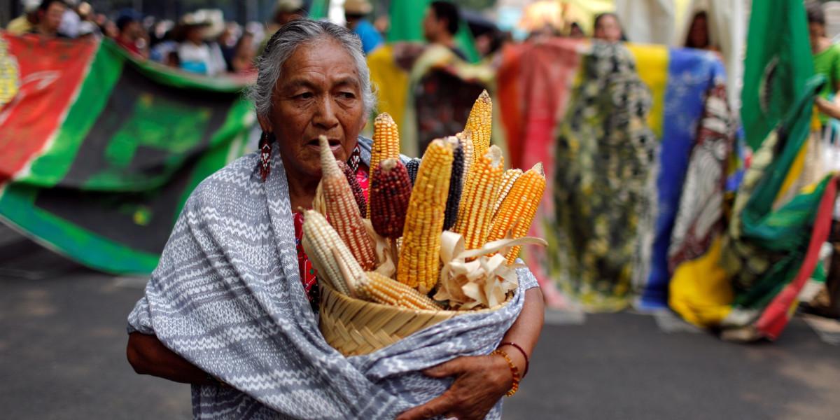 日前,有墨西哥農民手持一籃粟米,參與反孟山都的遊行。 圖片來源:REUTERS/Tomas Bravo