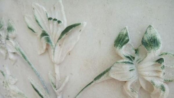 泰姬陵染上的綠色,並非顏料,而是昆蟲的排泄物,不單破壞外觀,亦令人噁心。圖片來源:印度斯坦時報