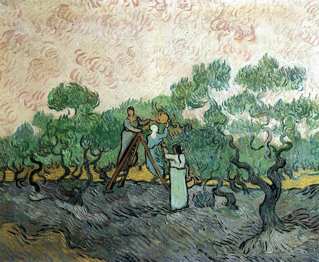 梵高畫作「摘橄欖的人」下落不明。據說最後一次出現在瑞士洛桑的倉庫中。 圖片來源:維基百科