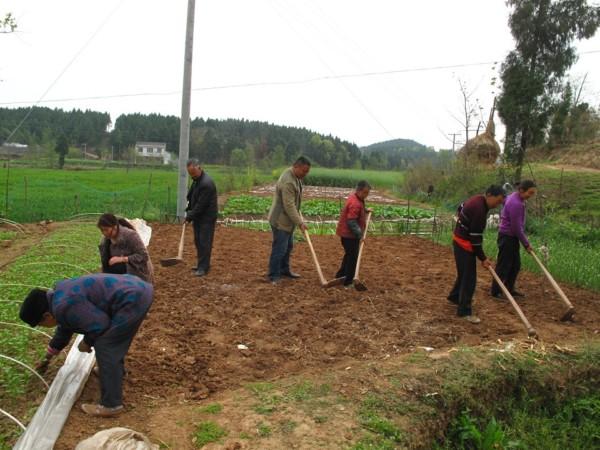 有了足夠的灌溉水,王伯伯一家能重新務農。