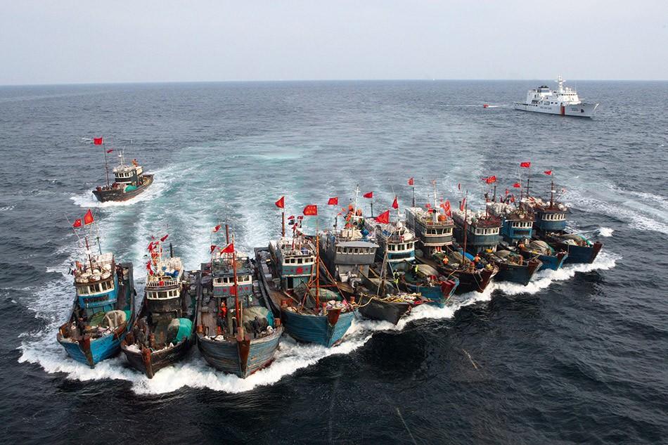 黃花魚近年來在中國海近乎絕跡,導致中國漁船到西非非法捕撈。 圖片來源:answersafrica.com