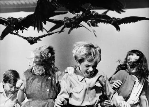 希治閣作品「鳥」的劇照,角色遭烏鴉攻擊。