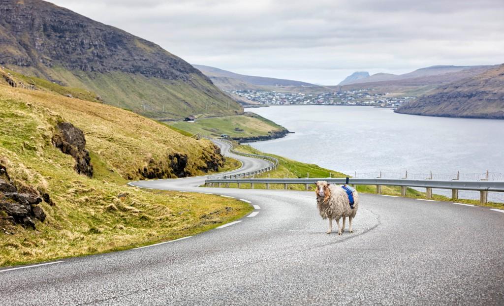 圖片來源:visitfaroeislands