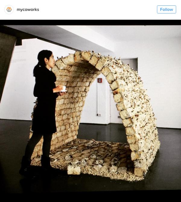 由菌絲體所構成的磚頭屋。 圖片來源: mycoworks@instagram