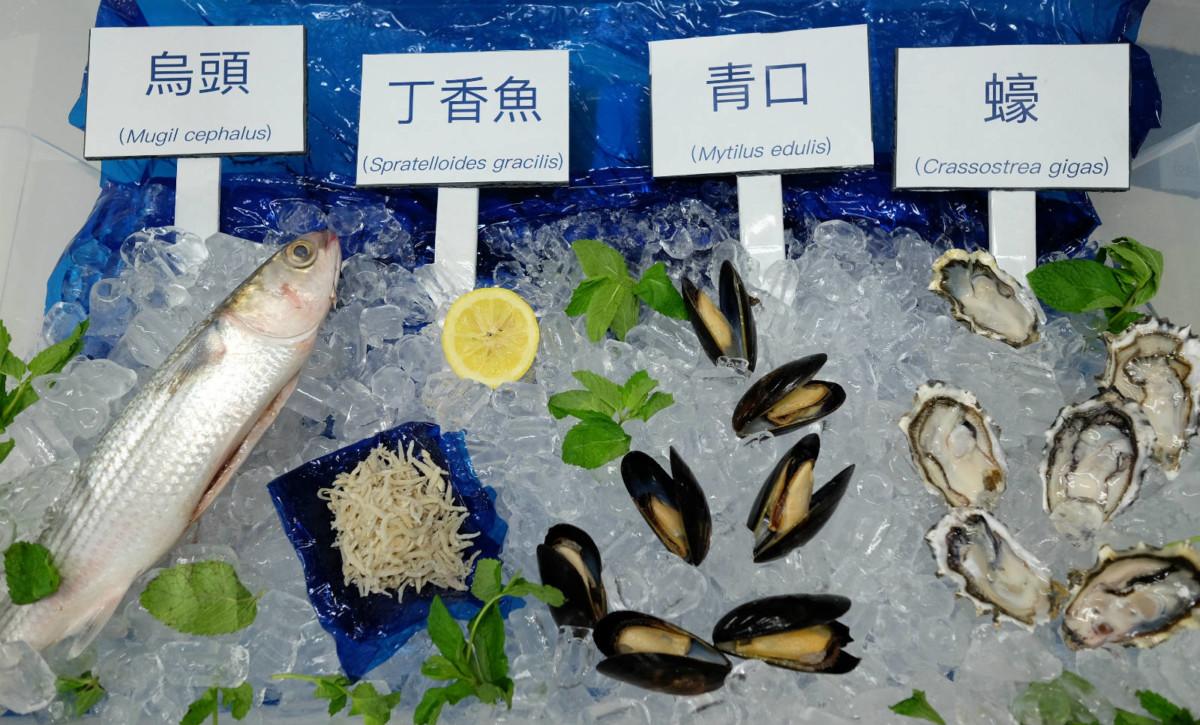 香港人常食用的海鮮,包括蠔、烏頭、丁香魚等,都被發現含有微塑膠。