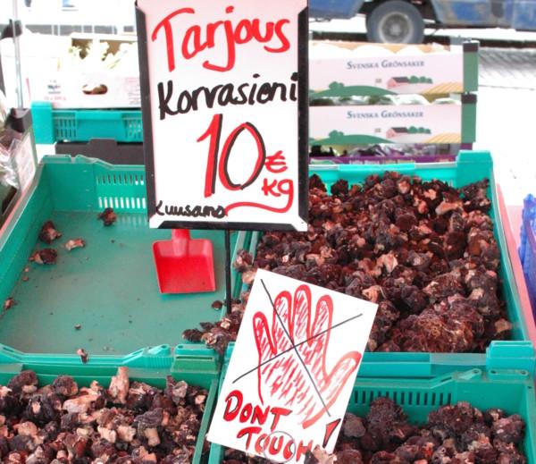 在芬蘭出售假羊肚菌須有警告標語。 圖片來源:wikicommons