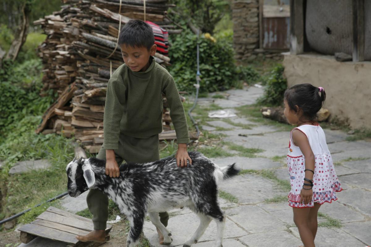 大地震令 Shrer 痛失家園,如今要寄人籬下,與叔叔一家同住。