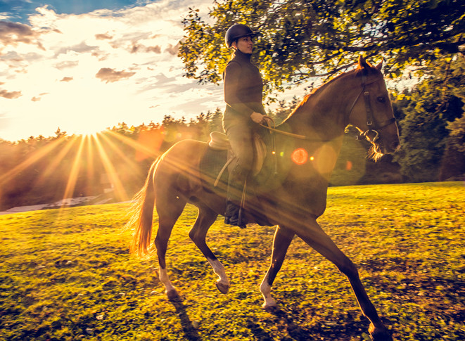 Woman with helmet riding a brown horse on a meadow beside a forest. Sun and clouds in the background. Lens flare.