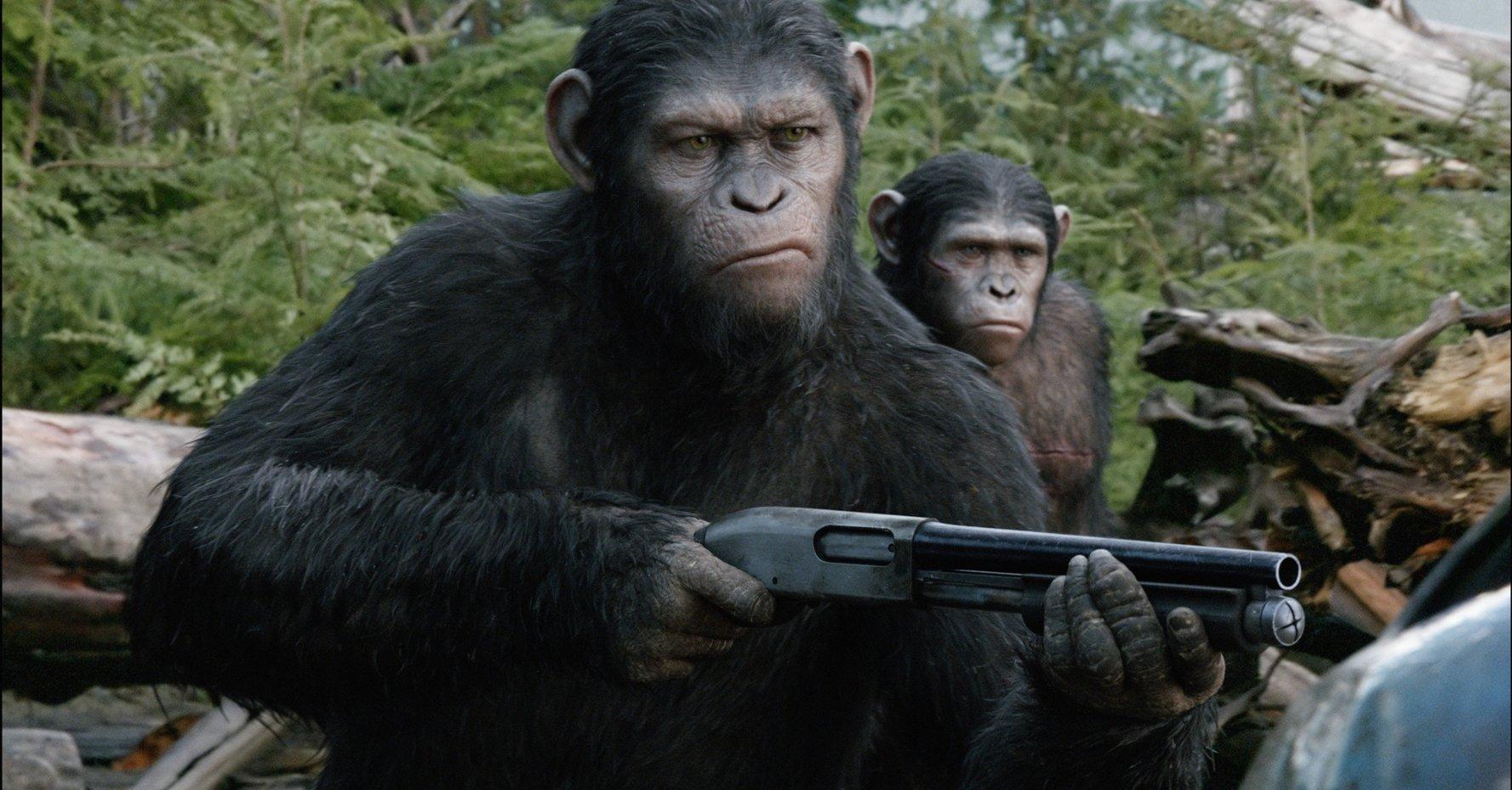 專家相信,如果猿人懂得用槍,人類將會大禍臨頭。圖片來源:電影「「猿人爭霸戰:猩凶崛起」劇照