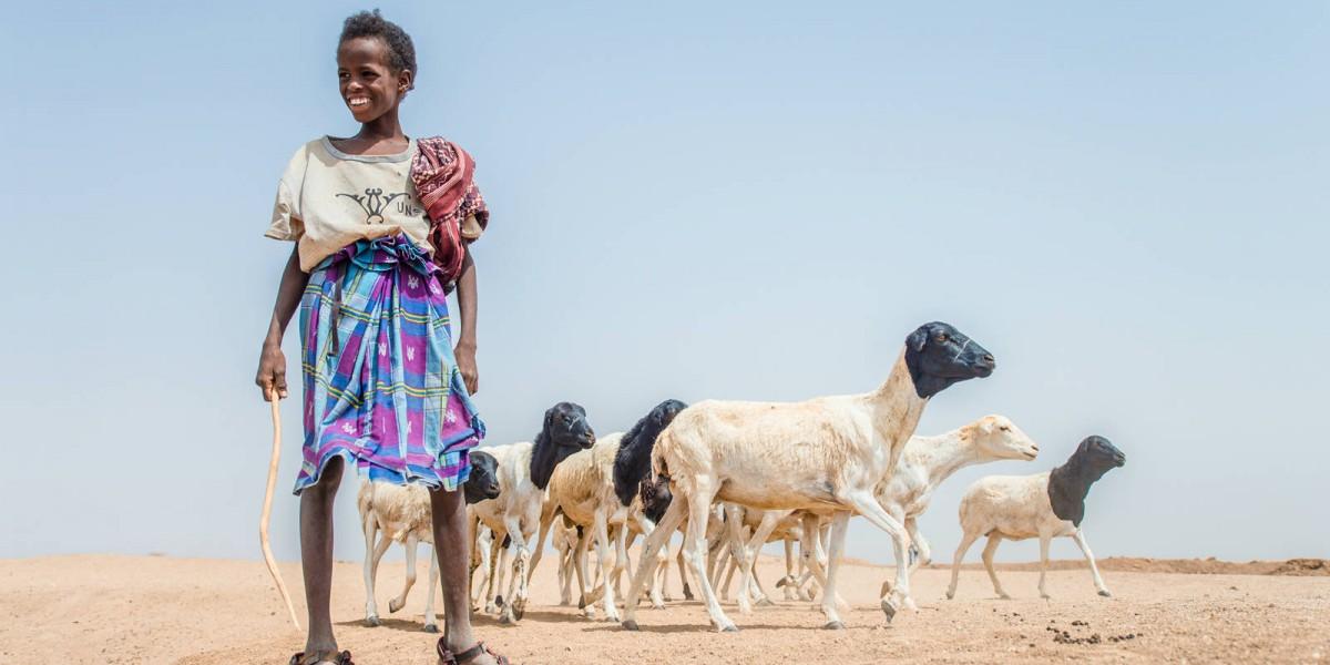 小朋友在沙漠中擔當做牧羊人的角色。