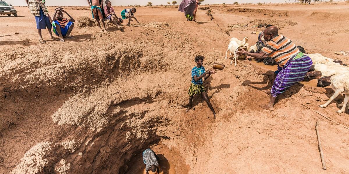 幾個人從坑內接力取水直至挖乾為止,再去別的地方尋找水源。