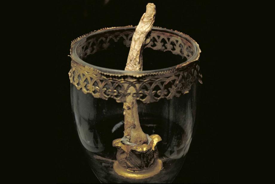 伽利略的中指。圖片來源:Artscatter