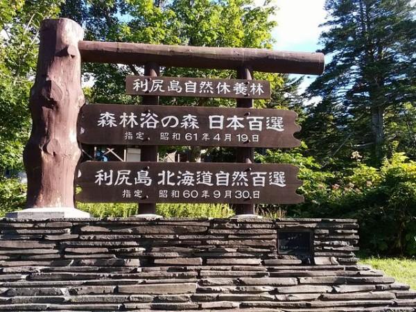 利尻島自然休養林是日本「百大森林浴」之一。 圖片來源:jalan.net