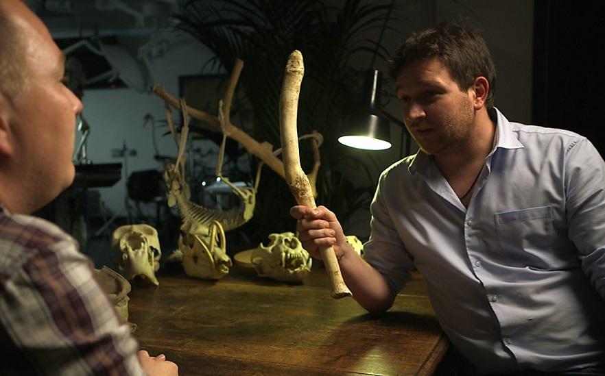 「憑甚麼海象有,我無?」 圖片來源:BBC