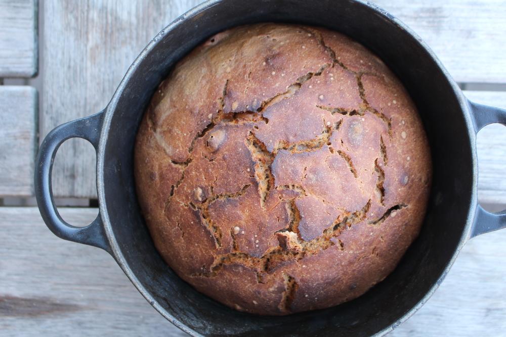 將樺木樹皮磨粉篩好,充當麵粉,可以做成樹皮蛋糕。今人覺得只有飢荒才吃樹皮,但據講樹皮其實是 18 至 19 世紀北歐人的傳統的食材,他們會在 7 月收割半剝落的樹皮,做成麵粉,成為烘烤材料。