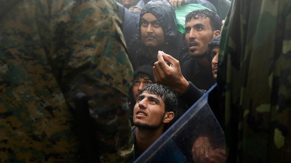 中東難民危機背後,全球暖化亦是推手之一。 圖片來源:路透社