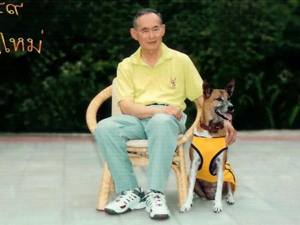 泰王普密蓬與其愛犬通丹於 2002 年的合照。 圖片來源:路透社