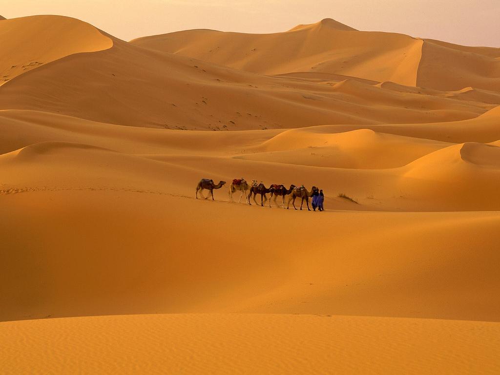 撒哈拉沙漠,竟由人類所創?