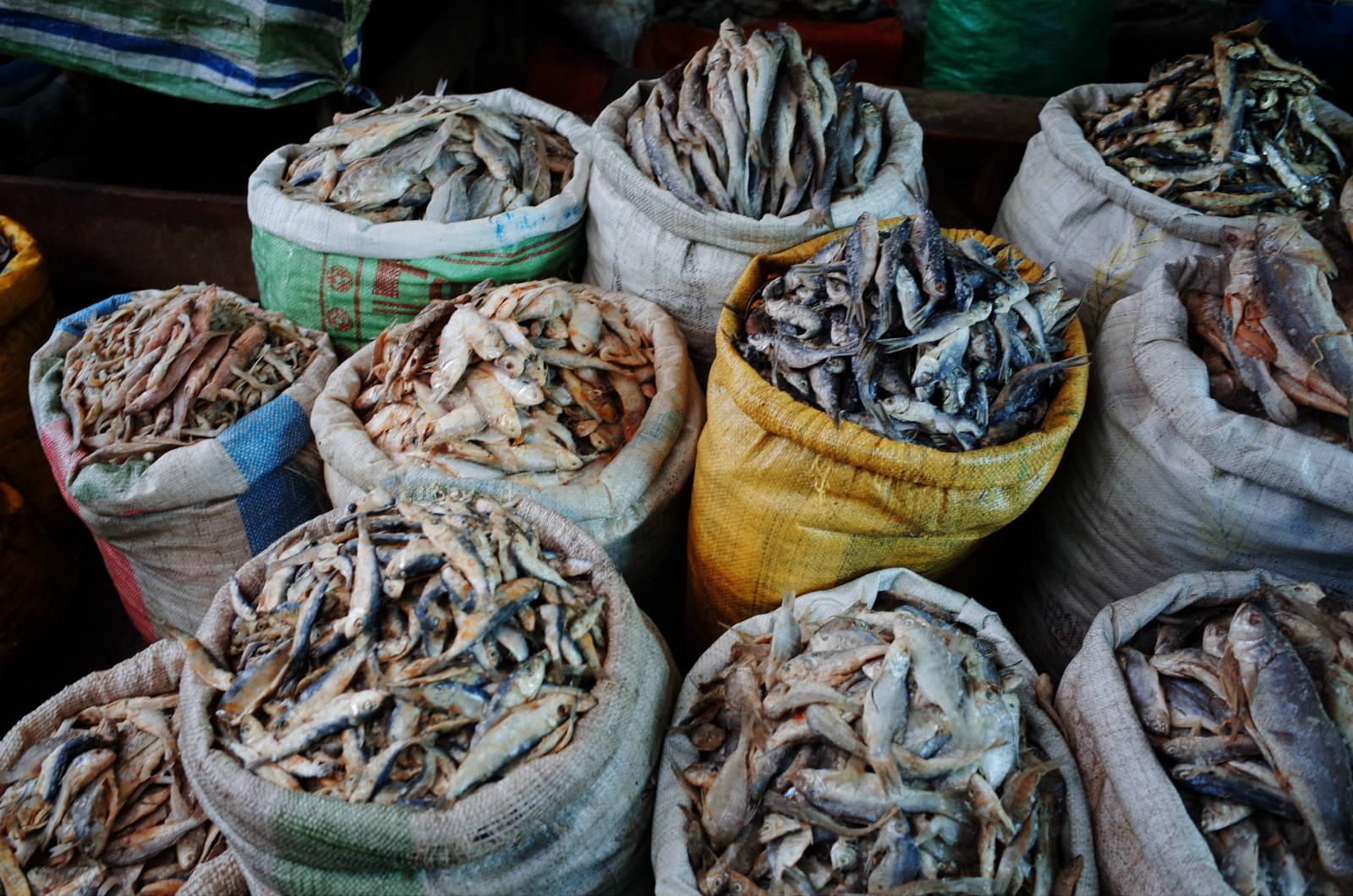 馬達加斯加漁產