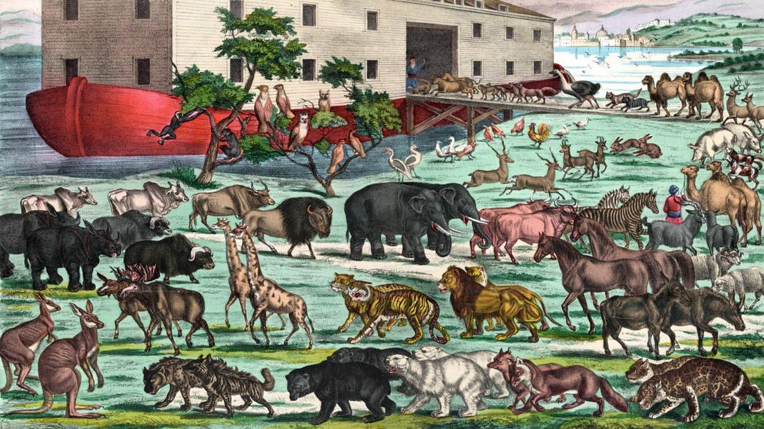 根據聖經記載,一對對動物,秩序井然地排隊登上挪亞方舟,這是人類早期的排隊描述之一。