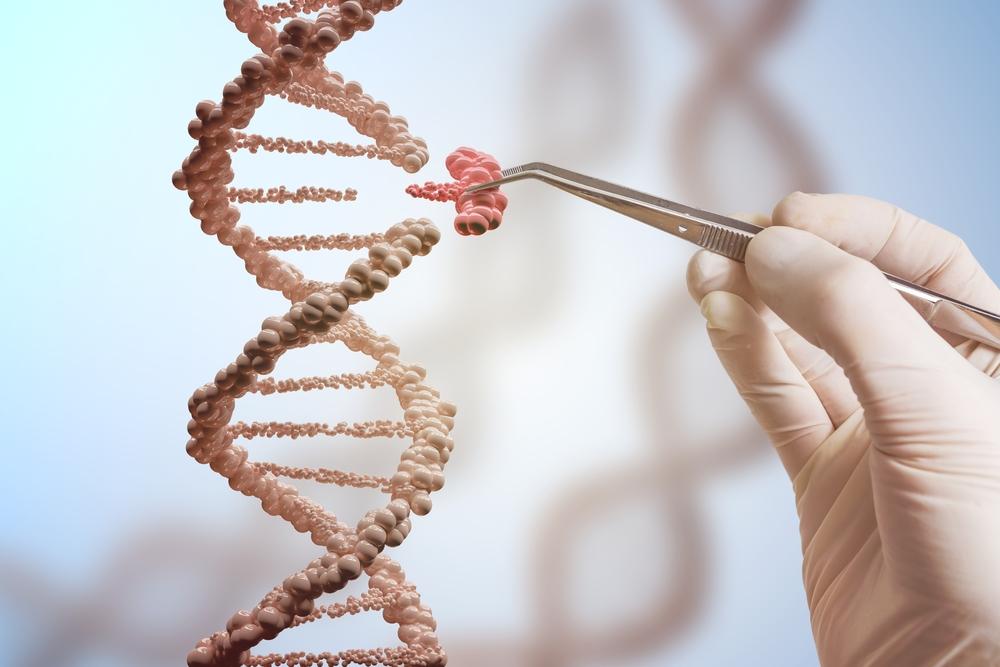 基因改造技術如要應用於人類,有何方面要注意?